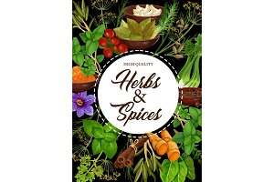 Seasoning natural herbs and spices