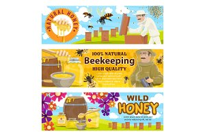Beekeeping and wild honey on apiary