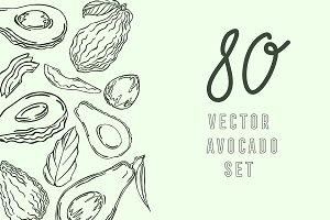 Avocados, vector