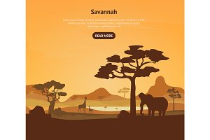 Cartoon African Savannah Card Poster