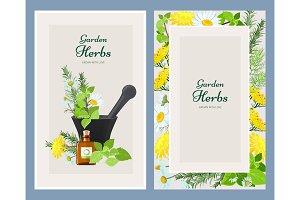 Floral cards. Herbalism medicine