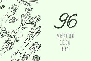 Leek, Vector