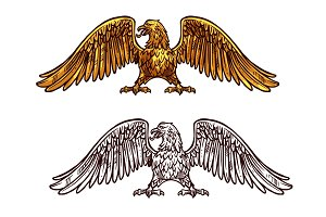 Eagle or hawk golden icon, vector