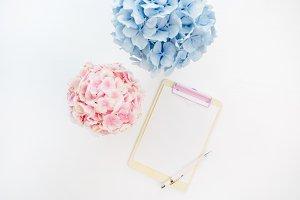 Blank clipboard & hydrangea flowers