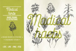 Medical herbs illustrations