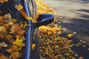 Car with leaves on the road in
