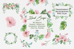 Tropical Leaves, Flowers & Frames