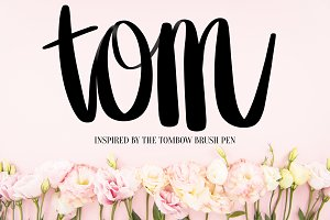 Tom Procreate Lettering Brush