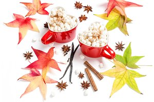 Autumn leaves cup hot drink spices