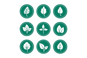 Green leaf round icons set