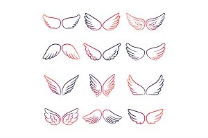 Colorful wings line set