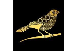 Golden bird isolated on black