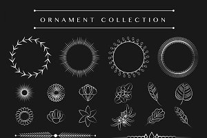 Ornaments collection design vector
