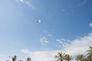 Man flying a kite on the beach.
