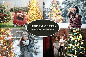 Christmas Trees photo overlays