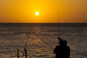 fishermen angler  with rod and reel