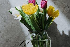 spring tulip flowers in glass jar on