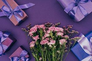 beautiful blooming chrysanthemum flo