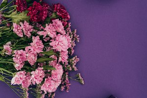 beautiful blossoming flowers and gif