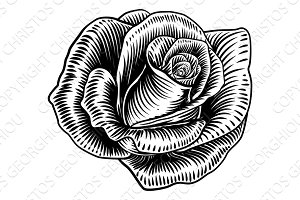 Rose Flower Woodcut Etching Style