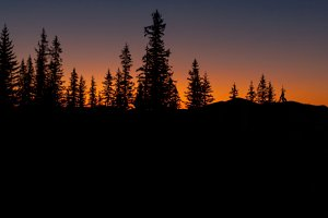 nature, forest, mountains and sunset