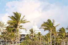 Miami Beach with palm trees. by  in Holidays