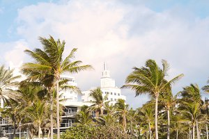 Miami Beach with palm trees.