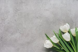 top view of white tulips on concrete