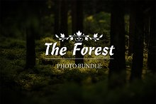 The Forest Bundle