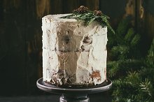 Christmas naked cake by  in Food & Drink