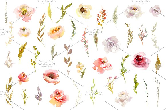 Watercolor Pink White Red Flowers in Illustrations - product preview 2