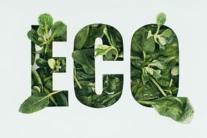 word eco made from fresh green leave