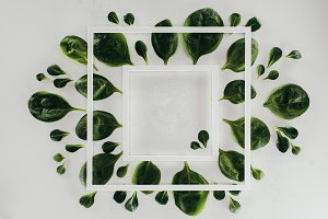 top view of white square frames and