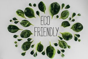 top view of green leaves and eco fri