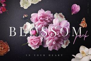 Blossom - Flowers Clip Art Pack