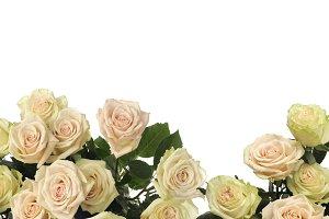 Rose Flower frame bouquet background
