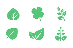Green leaves set, various shapes of