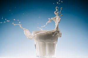 Glass of milk with large splashes is