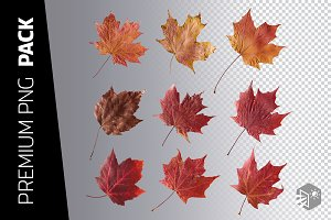 9 RED MAPLE LEAF PNG IMAGES