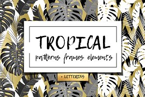 Tropical patterns, elements + Bonus!