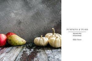 Pumpkins & Pears | Square No 7