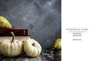 Pumpkins & Pears | Square No 6