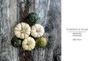 Pumpkins & Pears | Square No 1