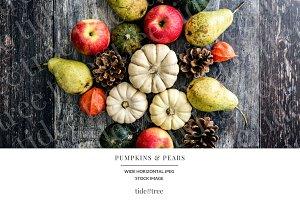 Pumpkins & Pears   Wide No 3