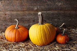 Halloween pumpkins in dark barn