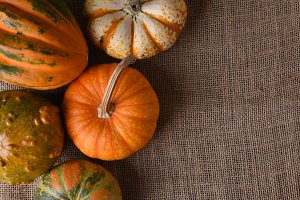 Decorative gourds and pumpkins on a