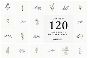 Hand Drawn Nature Element ( VOL 1 )