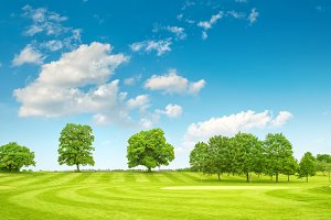 Golf course. Spring field landscape
