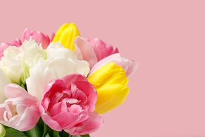 Bouquet of spring tulips isolated on