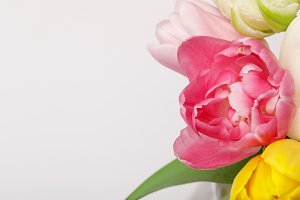 Bouquet of colorful tulips isolated